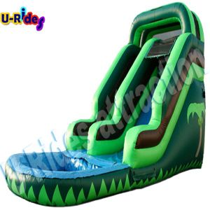 Green 8 Meter Height Inflatable Pool Slide pictures & photos