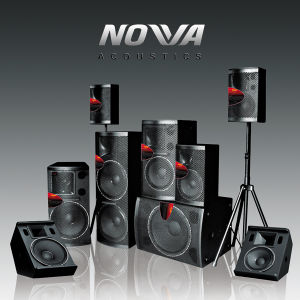 PA Audio, PA Loudspeaker, Professional Loudspeaker PRO Audio (PL-15) pictures & photos
