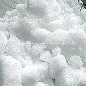 Synthetic Camphor Powder