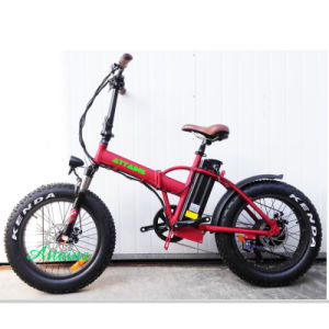 48V 500W/750W 20′′ Foldable E Bike Folding Fat Tire Beach Snow Electric Bike pictures & photos
