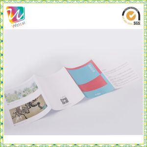 Cheap Full Color Printing Brochure Booklet (MP-010) pictures & photos