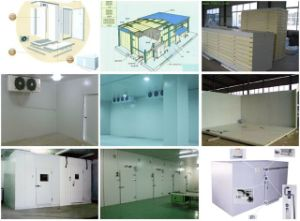 Atmosphere Controlled (AC) Storage Room for Fruits, Vegetables pictures & photos