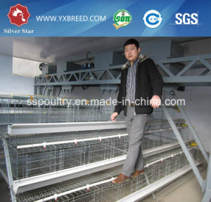 A3l90 a-Frame Floor-Saving Design Layer Chicken Cage for Sale pictures & photos