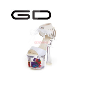 Fashionable Women Transparent Heel Metal Ornament Bowknot Square Heel Sandals for Party pictures & photos