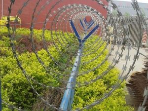Factory Barbed Wire/Razor Barbed Wire in Roll pictures & photos