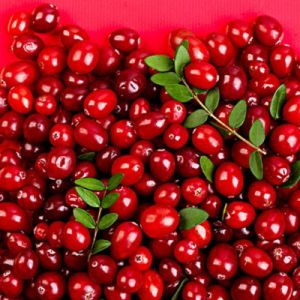 High Quality Cranberry Extract, Anthocyanidins 25% pictures & photos