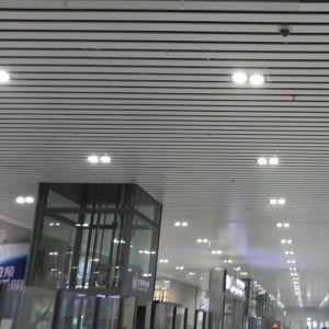 Artistic Aluminum Customized Baffle Ceiling for Interior Decorative pictures & photos