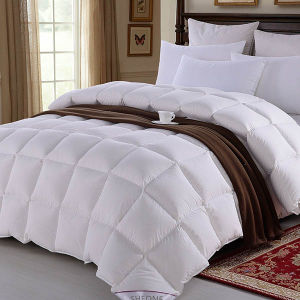 Latest Luxury Design Pure Handmade Hotel Comforter Sets White Duvet pictures & photos