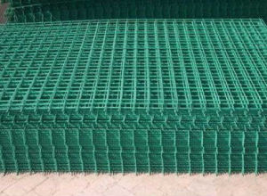 ISO 9001 Factory Supply Hot-Dipped Galvanized Welded Wire Mesh Panel pictures & photos