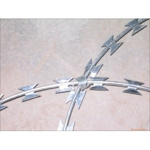 High Quality Galvanized Concertina Razor Wire /Razor Barbed Wire pictures & photos