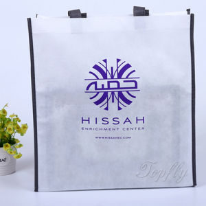 Manufactorer of Promotion Non-Woven Shopping Bag pictures & photos