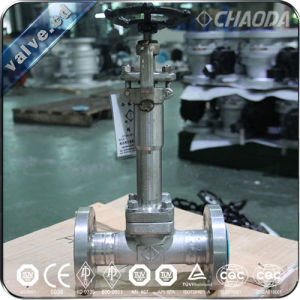 Flanged Forged Cryogenic Gate Valve pictures & photos