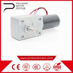 Hot Sale 12V 24V Worm Reducer DC Motor pictures & photos