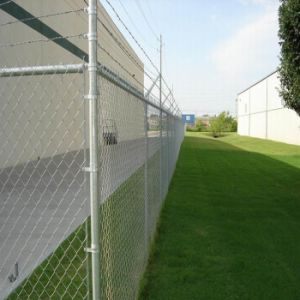 High Quality Fence Netting/Wire Mesh/Chain Link Fence pictures & photos