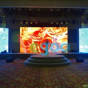 High Definition Professional Manufacturer 4.8mm Indoor LED Display Screen Module for Stage