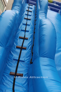 Inflatable Slide slide jumping for outdoor pictures & photos
