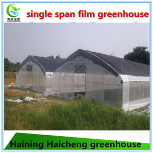 The Cheapest Plastic-Film Greenhouse for Flowers pictures & photos