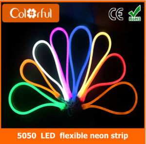 Big Promotion High Quality AC230V SMD5050 RGB LED Neon Flex pictures & photos