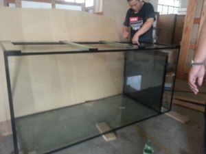 Professional Custom Low Iron Glass Rectangular Aquariums for Sale pictures & photos