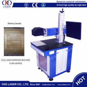 Mini CO2 Laser Marking Machine for Bamboo pictures & photos