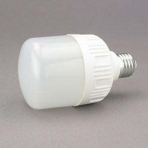 LED Global Bulbs LED Light Bulb 10W Lgl3106