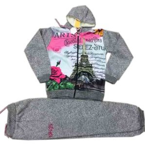 Hot Transfer Print Children Clothes in Fleece Hoodies with Pant Suits Sq-17117 pictures & photos