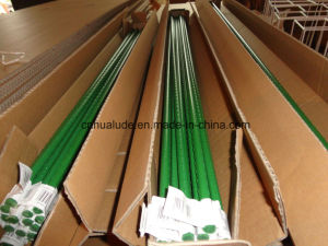 Green Plastic Coated Plant Stake/Garden Pot Flower pictures & photos