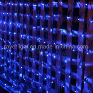 1.5mx 1.5m LED Net Light/Christmas Light/Holiday Light pictures & photos