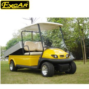 Ce Approved 2 Seater Utility Electric Golf Cart with Cargo pictures & photos
