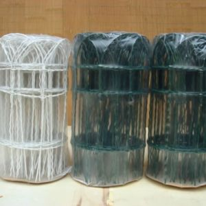 Green PVC Coated Garden Border Wire Fence pictures & photos