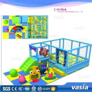 Vasia New Indoor Playground with Ce Approved pictures & photos