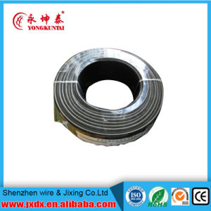 450/750 V PVC Coated Electric/ Electrical Copper Wire Cable pictures & photos