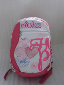 Pink Cloth Travel Sports Outdoor Bags Computer Backpack pictures & photos