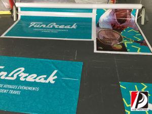 High Definition Flex Vinyl Banner for Promotion (VIN-011) pictures & photos