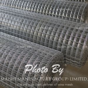 Security Hot Sale Welded Wire Mesh pictures & photos