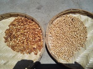 Chickpeas CCD Color Sorting Machine pictures & photos