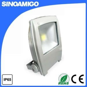 LED Floodlight LED Lamp (FBDF-100I) pictures & photos
