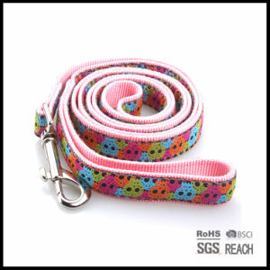 Extra Heavy Duty Woven Ribbon Nylon Pet Dog Puppy Leashes pictures & photos