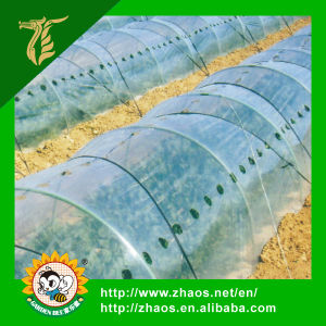 Popular Type Hot Sale Tunnel Plastic Greenhouse Film Agriculture pictures & photos