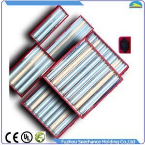 Dual Voltage Input, 120V/240V AC pictures & photos