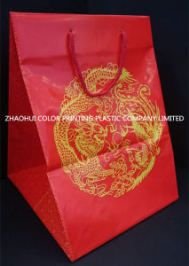 Shopping Bag with Handle / Plastic Gift Bag pictures & photos