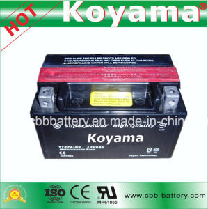 6ah 12V Lead Acid Motorcycle Battery Ytx7a-Bs (6ah 12V) pictures & photos