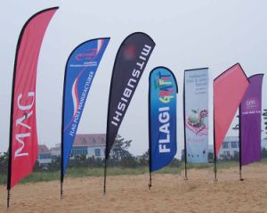 Flying Banner Beach Banner Display Banner Advertising Banner pictures & photos