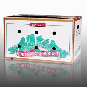 Wax Box/ Wax Carton/ Waterproof Carton/ Vegetable Carton