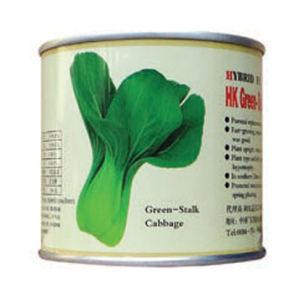 Hk Green Stalk Cabbage Seeds (103)