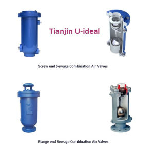 Single Body Sewage Combination Air Valves, Air Release Valve pictures & photos