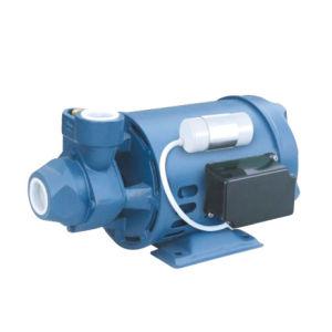 Lowara Type Peripheral Pump (PM16)