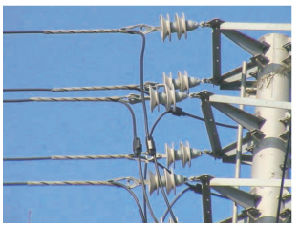 ACSR Swan/Quail/Raven /Linnet /Hawk /Teal /Darke /Canary Conductor, Overhead Conductor to ASTM B232 pictures & photos