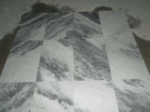 China White-Grey Marble (M311)