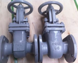 russia standard gate valve  (Z41H-16C) pictures & photos